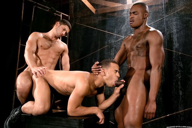 RagingStallion-Trelino-handsome-young-fellow-Tyson-Tyler-Dato-Foland-glutes-man-hole-sexual-energy-throbbing-cocks-ass-cum-007-tube-download-torrent-gallery-photo