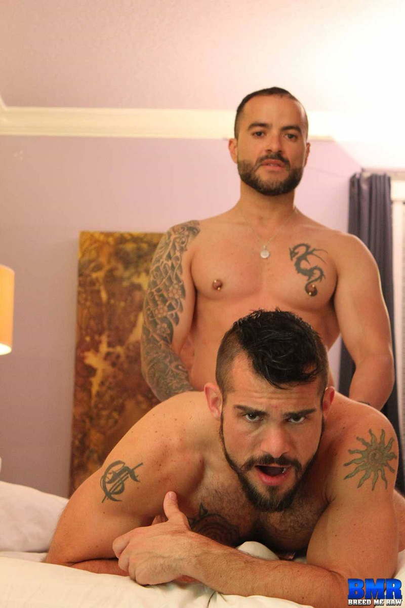 BreedMeRaw-Aarin-Asker-Gabriel-Fisk-ass-eating-rimming-hairy-slut-butt-asshole-thick-uncut-bare-raw-dick-crack-bareback-fucked-hard-07-gay-porn-star-sex-video-gallery-photo