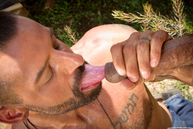 RagingStallion-David-Benjamin-Boomer-Banks-enormous-massive-cock-oral-skills-man-hole-rimming-jerks-off-hot-cum-load-08-gay-porn-star-sex-video-gallery-photo