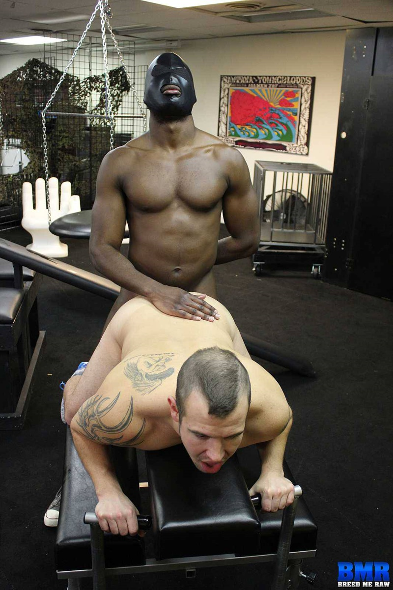 BreedMeRaw-Huge-black-cock-PHAT-young-white-ass-Chip-Young-bubble-butt-James-Django-black-fuck-cock-sucked-asshole-rimming-013-gay-porn-tube-star-gallery-video-photo