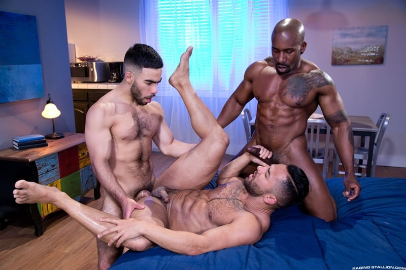 Men for Men Blog RagingStallion-Bruno-Bernal-Max-Konnor-Papi-Suave-sucks-massive-thick-big-black-dicks-cocksucker-anal-ass-fucking-013-gay-porn-pictures-gallery Bruno Bernal sucks down hard on both Max Konnor and Papi Suave's massive thick dicks Raging Stallion  tongue Streaming Gay Movies Smooth ragingstallion.com RagingStallion Tube RagingStallion Torrent RagingStallion Papi Suave RagingStallion Max Konnor RagingStallion Bruno Bernal raging stallion premium gay sites Porn Gay Papi Suave tumblr Papi Suave tube Papi Suave torrent Papi Suave RagingStallion com Papi Suave pornstar Papi Suave porno Papi Suave porn Papi Suave penis Papi Suave nude Papi Suave naked Papi Suave myvidster Papi Suave gay pornstar Papi Suave gay porn Papi Suave gay Papi Suave gallery Papi Suave fucking Papi Suave cock Papi Suave bottom Papi Suave blogspot Papi Suave ass nude RagingStallion naked RagingStallion naked man Max Konnor tumblr Max Konnor tube Max Konnor torrent Max Konnor RagingStallion com Max Konnor pornstar Max Konnor porno Max Konnor porn Max Konnor penis Max Konnor nude Max Konnor naked Max Konnor myvidster Max Konnor gay pornstar Max Konnor gay porn Max Konnor gay Max Konnor gallery Max Konnor fucking Max Konnor cock Max Konnor bottom Max Konnor blogspot Max Konnor ass jockstrap jock hot naked RagingStallion Hot Gay Porn hole HIS gay video on demand gay vid gay streaming movies Gay Porn Videos Gay Porn Tube Gay Porn Blog Free Gay Porn Videos Free Gay Porn face Cock cheeks cheek Bruno Bernal tumblr Bruno Bernal tube Bruno Bernal torrent Bruno Bernal RagingStallion com Bruno Bernal pornstar Bruno Bernal porno Bruno Bernal porn Bruno Bernal penis Bruno Bernal nude Bruno Bernal naked Bruno Bernal myvidster Bruno Bernal gay pornstar Bruno Bernal gay porn Bruno Bernal gay Bruno Bernal gallery Bruno Bernal fucking Bruno Bernal cock Bruno Bernal bottom Bruno Bernal blogspot Bruno Bernal ass ass