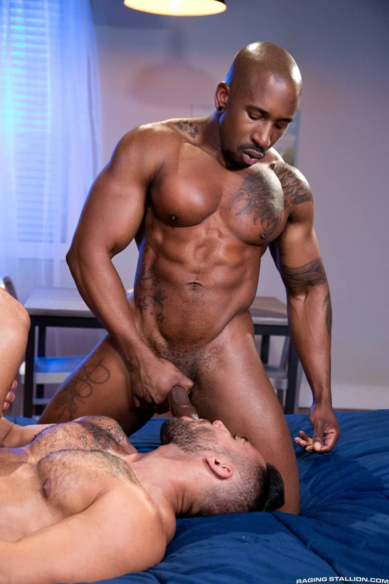 Men for Men Blog RagingStallion-Bruno-Bernal-Max-Konnor-Papi-Suave-sucks-massive-thick-big-black-dicks-cocksucker-anal-ass-fucking-014-gay-porn-pictures-gallery Bruno Bernal sucks down hard on both Max Konnor and Papi Suave's massive thick dicks Raging Stallion  tongue Streaming Gay Movies Smooth ragingstallion.com RagingStallion Tube RagingStallion Torrent RagingStallion Papi Suave RagingStallion Max Konnor RagingStallion Bruno Bernal raging stallion premium gay sites Porn Gay Papi Suave tumblr Papi Suave tube Papi Suave torrent Papi Suave RagingStallion com Papi Suave pornstar Papi Suave porno Papi Suave porn Papi Suave penis Papi Suave nude Papi Suave naked Papi Suave myvidster Papi Suave gay pornstar Papi Suave gay porn Papi Suave gay Papi Suave gallery Papi Suave fucking Papi Suave cock Papi Suave bottom Papi Suave blogspot Papi Suave ass nude RagingStallion naked RagingStallion naked man Max Konnor tumblr Max Konnor tube Max Konnor torrent Max Konnor RagingStallion com Max Konnor pornstar Max Konnor porno Max Konnor porn Max Konnor penis Max Konnor nude Max Konnor naked Max Konnor myvidster Max Konnor gay pornstar Max Konnor gay porn Max Konnor gay Max Konnor gallery Max Konnor fucking Max Konnor cock Max Konnor bottom Max Konnor blogspot Max Konnor ass jockstrap jock hot naked RagingStallion Hot Gay Porn hole HIS gay video on demand gay vid gay streaming movies Gay Porn Videos Gay Porn Tube Gay Porn Blog Free Gay Porn Videos Free Gay Porn face Cock cheeks cheek Bruno Bernal tumblr Bruno Bernal tube Bruno Bernal torrent Bruno Bernal RagingStallion com Bruno Bernal pornstar Bruno Bernal porno Bruno Bernal porn Bruno Bernal penis Bruno Bernal nude Bruno Bernal naked Bruno Bernal myvidster Bruno Bernal gay pornstar Bruno Bernal gay porn Bruno Bernal gay Bruno Bernal gallery Bruno Bernal fucking Bruno Bernal cock Bruno Bernal bottom Bruno Bernal blogspot Bruno Bernal ass ass